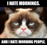 Grumpy Cat - I hate mornings and morning people.jpg